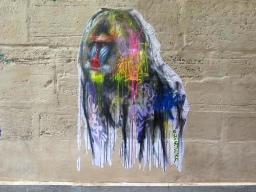 Mandrill - Street Art (Paris, 2019)