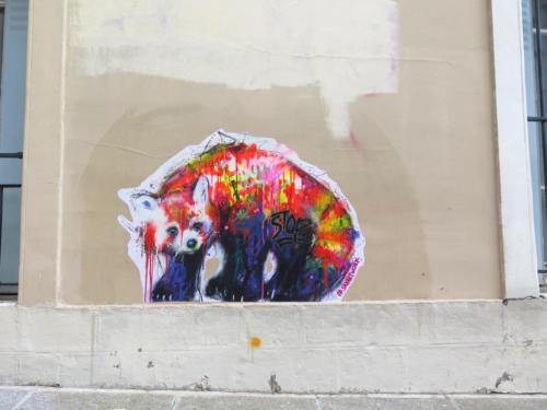 Panda roux - Street Art (Paris, 2019)