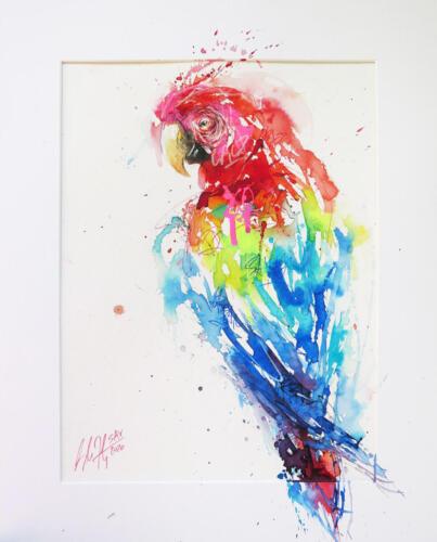Urban Scarlet Macaw
