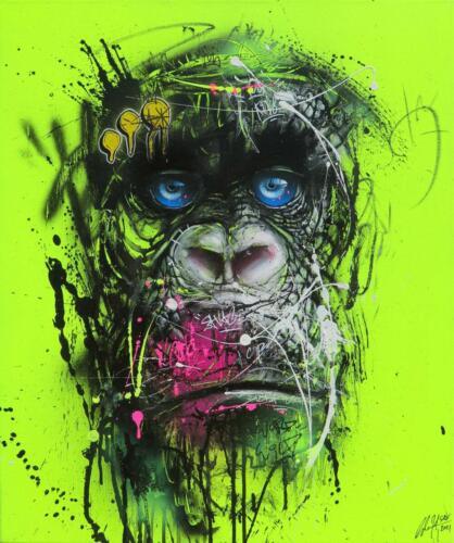 Chimpanze jaune