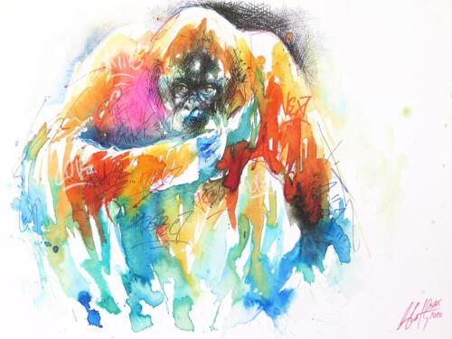 Urban Orangutan